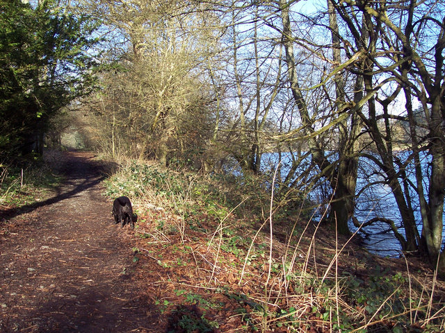 Lakeside Footpath at Fonthill
