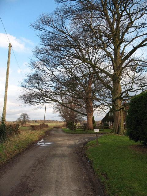 Lane at Burton Grange