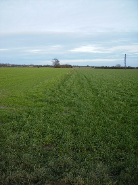 Little used footpath across agricultural land to Seamer