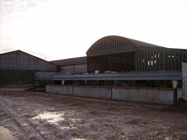 Farm buildings at Derwentdale Farm