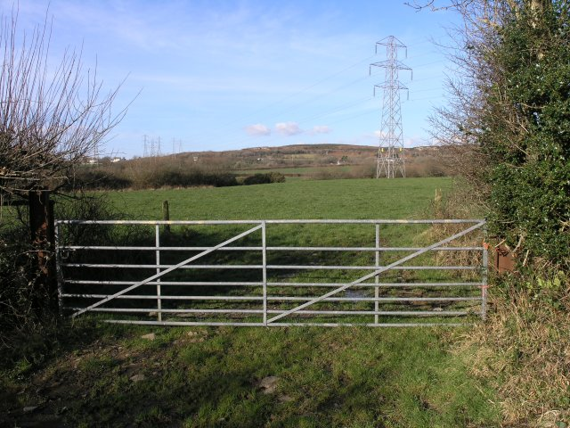 Farm gate and pylons