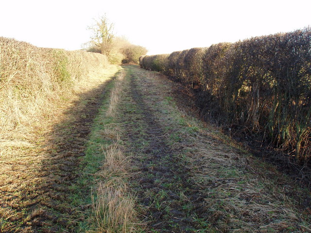 A Green lane, leading to High Moor off York Road, Healaugh, North Yorkshire