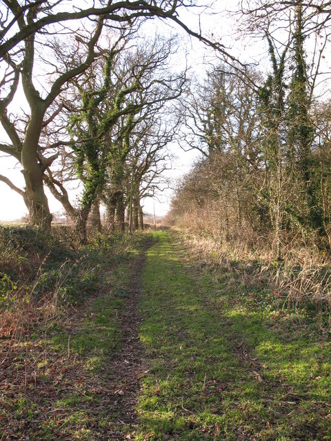 Track to Fawdington