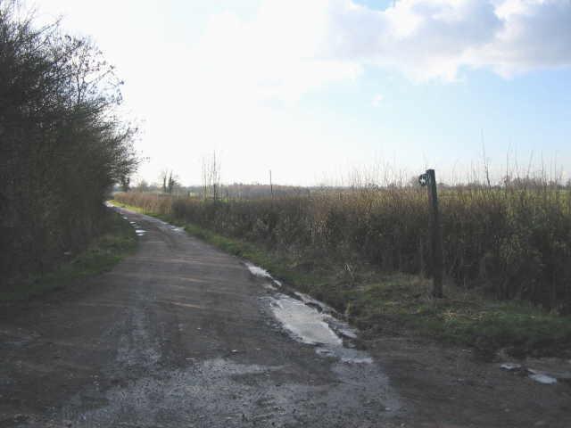 Cotswold bridleway