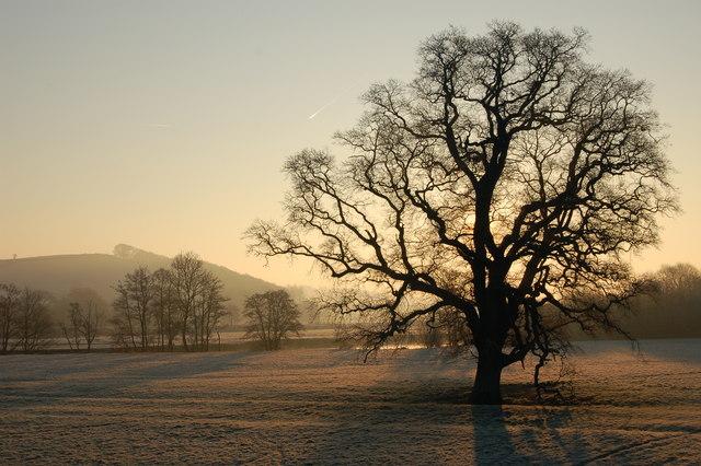 Frosty morning near New Bridge, Taw Valley, near Barnstaple.