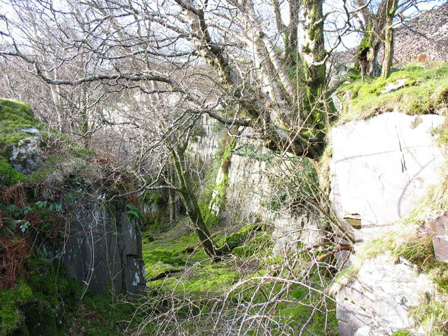 Cutting leading to the top gallery of the unnamed pit next to the Ffridd Incline