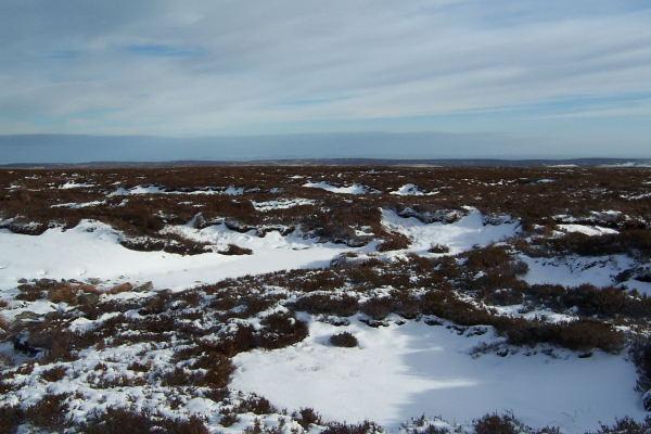 Gouthwaite Moor in Winter