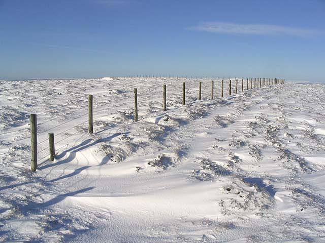 A fence on Hartsgarth Fell