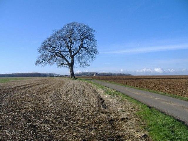 Hazlcote farm