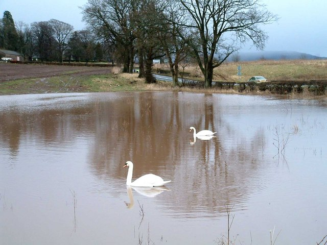 Flooded Field at Ballingall