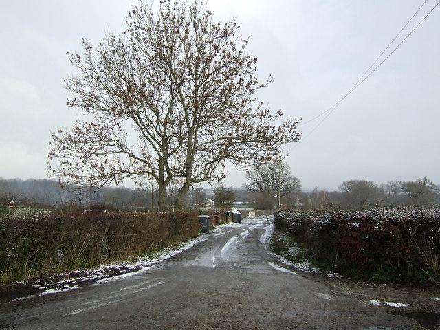 Farm road to Frankham Farm