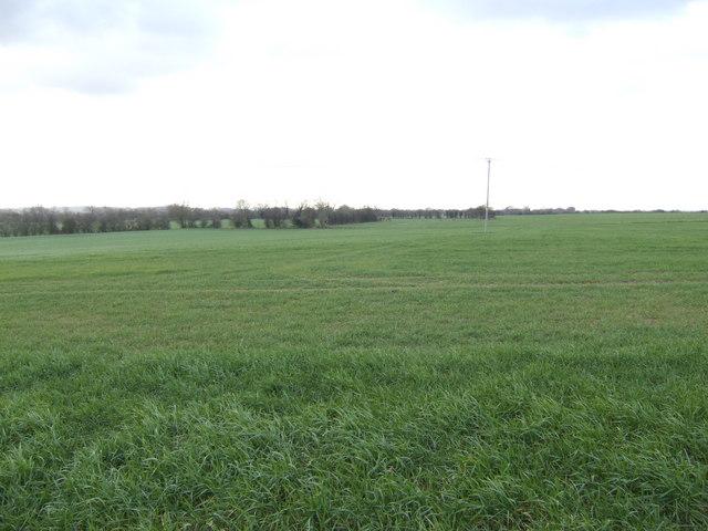 Arable fields west of Shifford