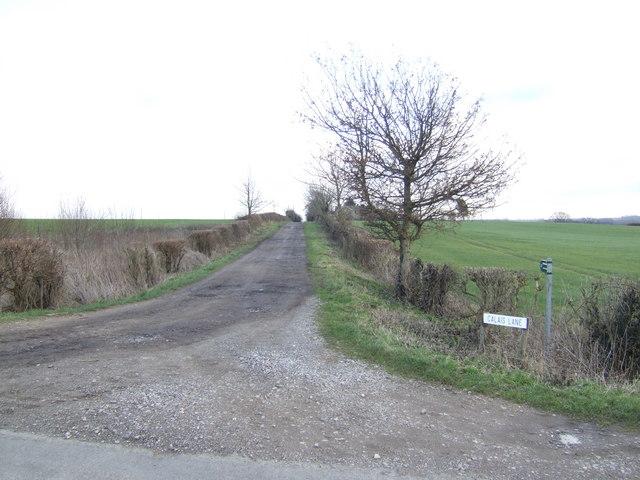 Calais Lane