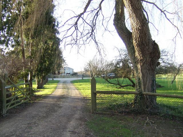 Tree-lined drive to Stonehenge Farm