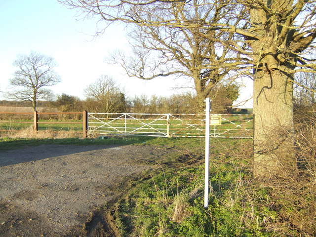 Footpath towards Tar Wood