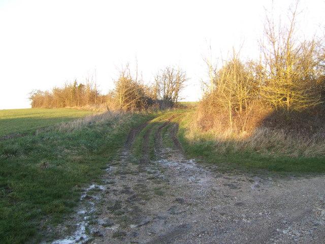 Footpath by Little Bartlett's