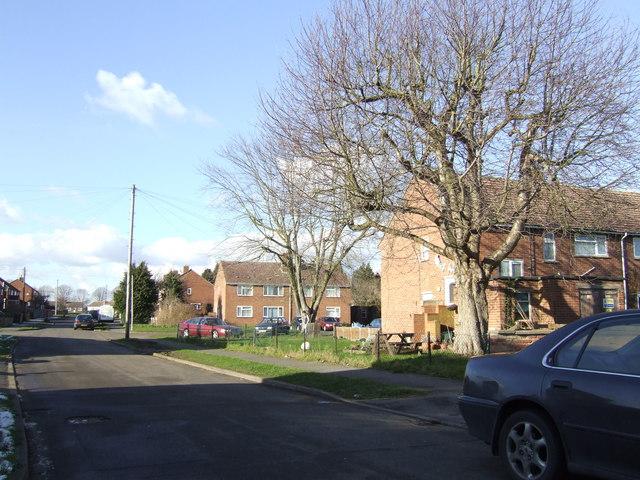 Housing estate, Wootton