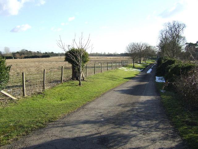 Rowleigh Lane