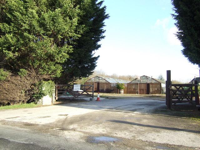 Cassington Nurseries