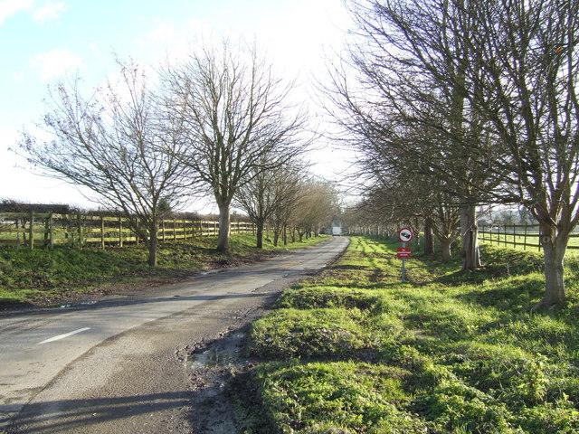Road to Worton
