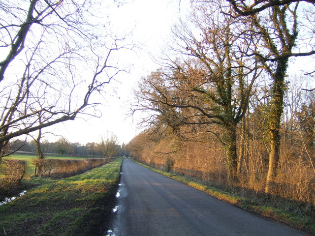 Cuckoo Lane towards sunset