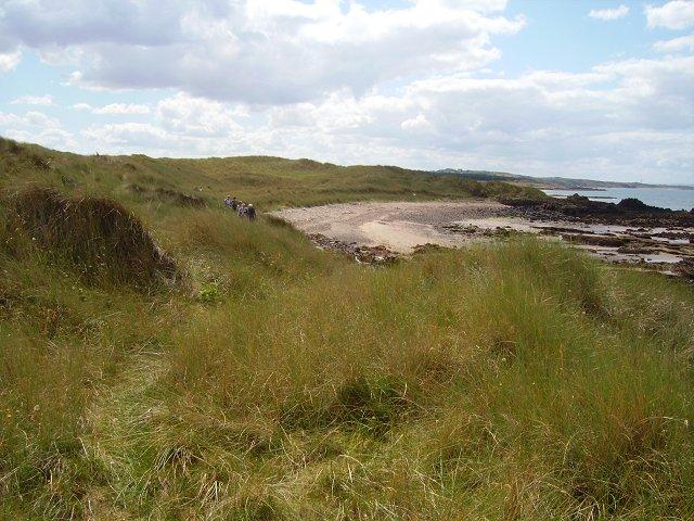 Coastal walking, Gullane