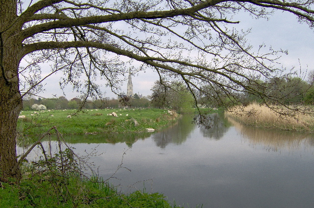River Nadder at Salisbury