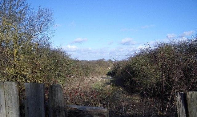 Disused Railway Track near Warmington