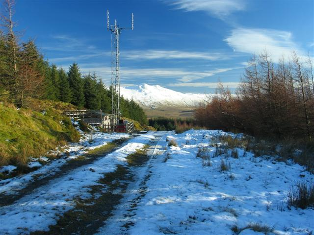 Forest Track and Communications Mast