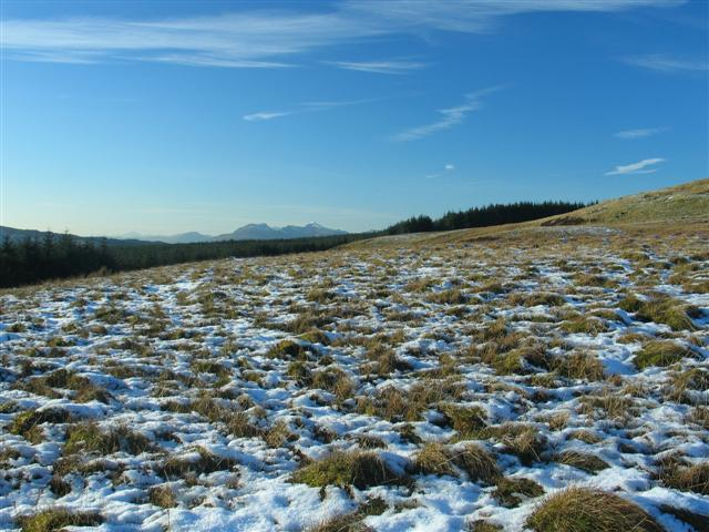 Moorland on Migneint