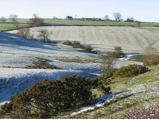 Winn Brook from Brackendale Lane