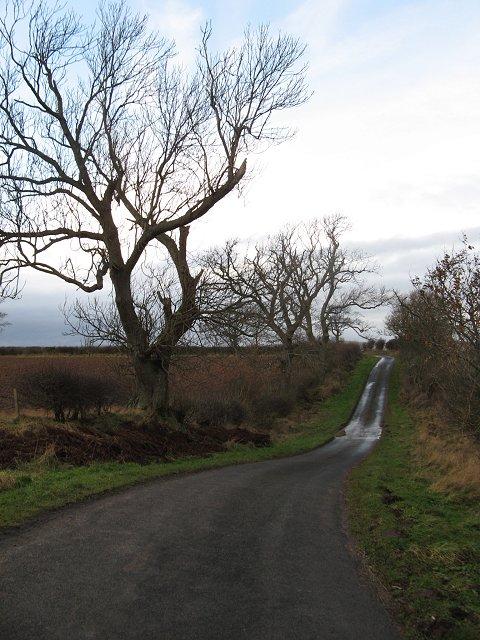 Lane near Crunk Law