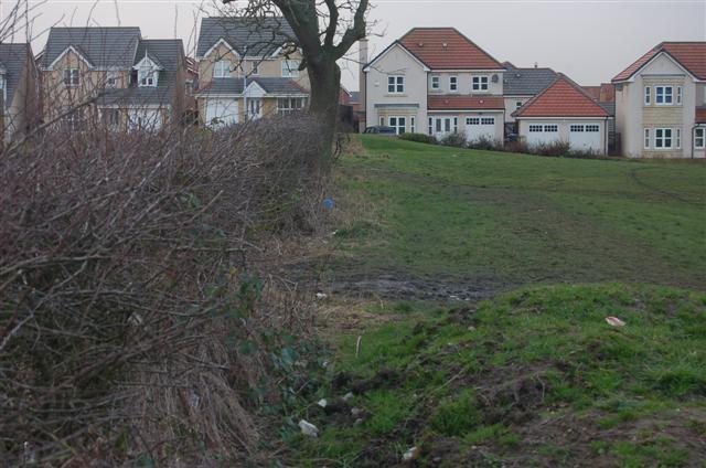 Former Field Boundary