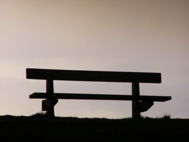 Bench on Warren Hill