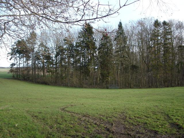 Ashmore Plantation