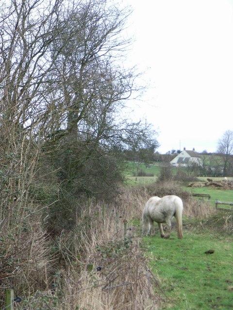 Near Oldends Farm