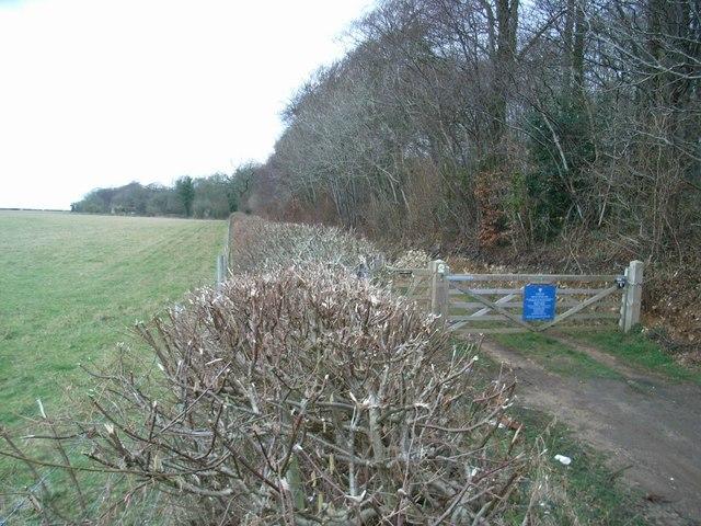 Track/footpath along Ash Hill