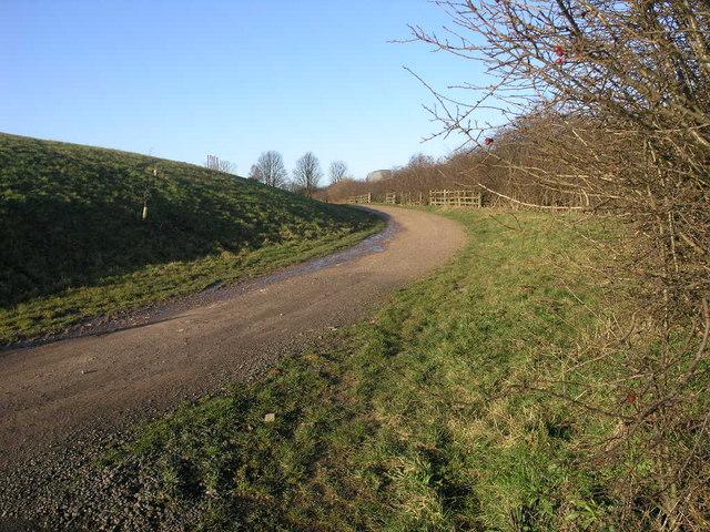 Path Around the Golf