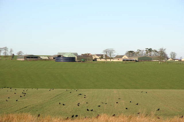 Oxenshaw Farm