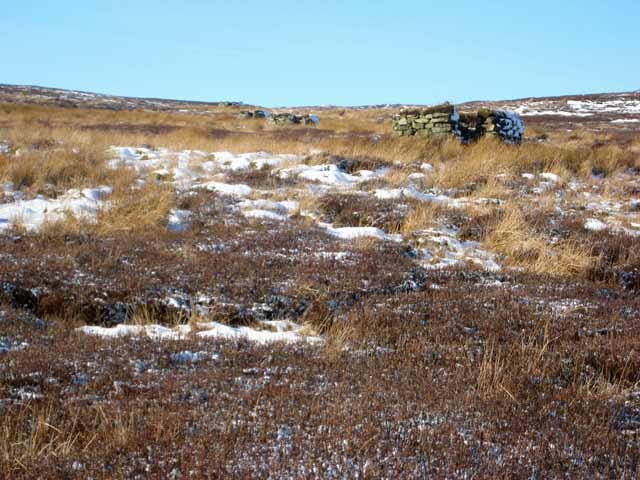 Line of shooting butts on Wolsingham Park Moor