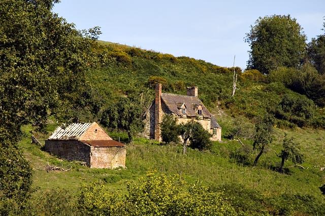 Derelict Cottage, Darley