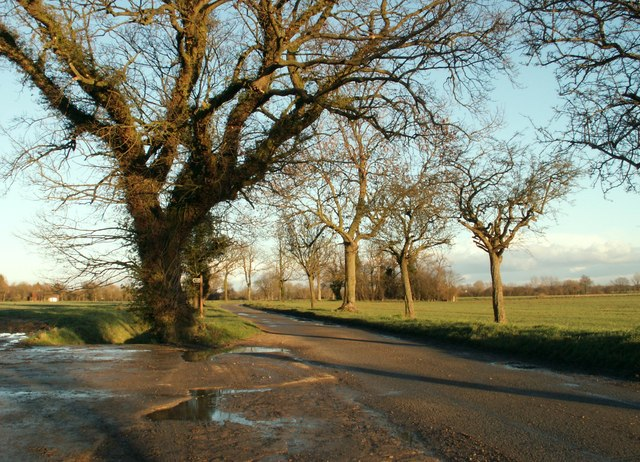 Country road to Aspall
