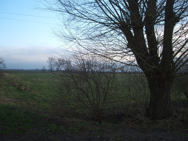 Looking across Swaffham Prior Fen, south of Upware