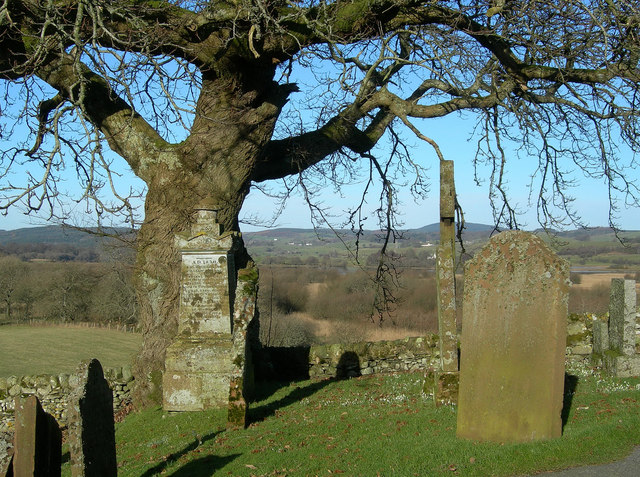 Looking North from Balmaghie Churchyard