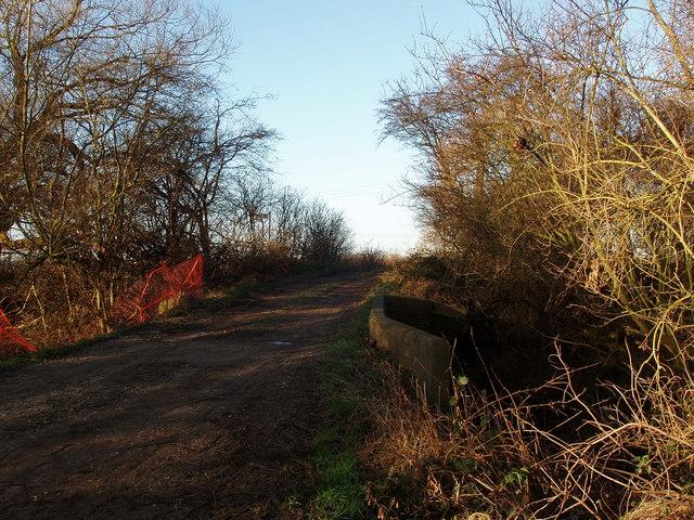 Bridge over Land Drain at Ings Lane, Arksey Ings, Bentley, South Yorkshire