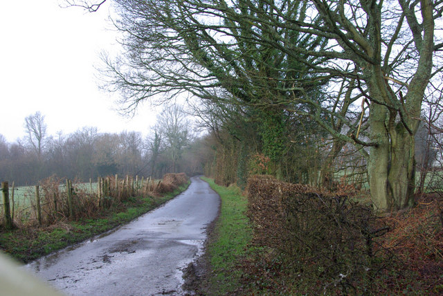 Lane towards Entry Hill Wood
