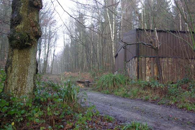 Forestry Shed