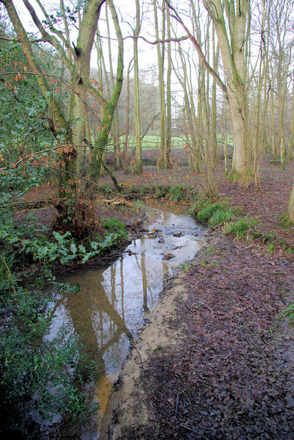 Stream, Entryhill Wood