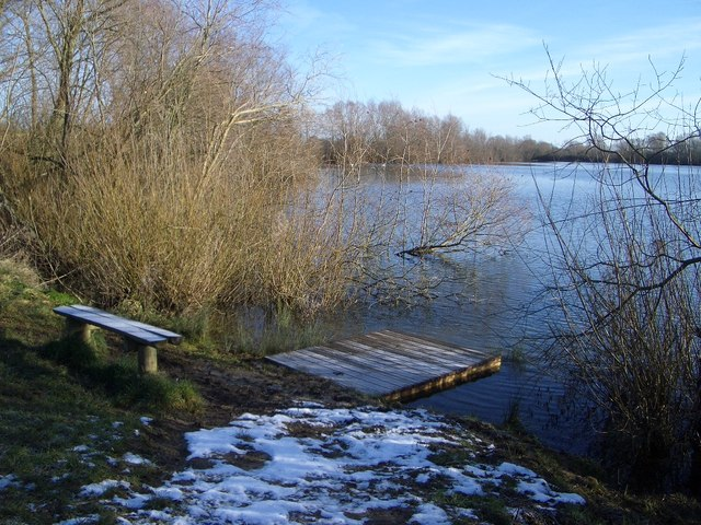 Pond Dipping Platform in Harrold Odell Country Park