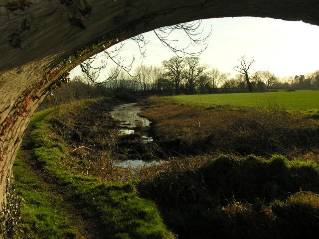 Restoration work in progress on Montgomery branch of Shropshire Union Canal